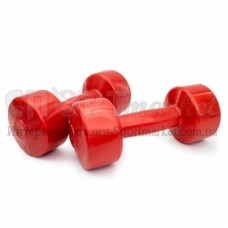Гантели для фитнеса Титан 2х 2,0 кг