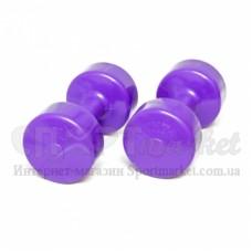 Гантели для фитнеса Титан 2х 4,0 кг