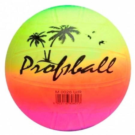 Мяч волейбольный Beach Volleyball EV 3190 5009