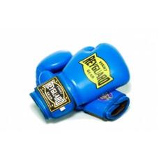 Перчатки боксерские Reyguard RBG-10