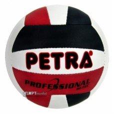 Волейбольный мяч Petra Professional