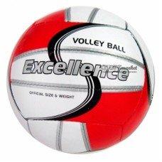 Мяч волейбольный Petra Excellence