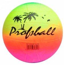 Мяч волейбольный Beach Volleyball EV 3190