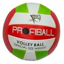 Мяч волейбольный Profiball EV 3159