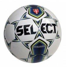 Футбольный мяч Select Evolution