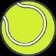 Мячи для большого тенниса (19)