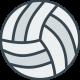 Волейбольные мячи (64)