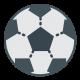 Футбол (78)